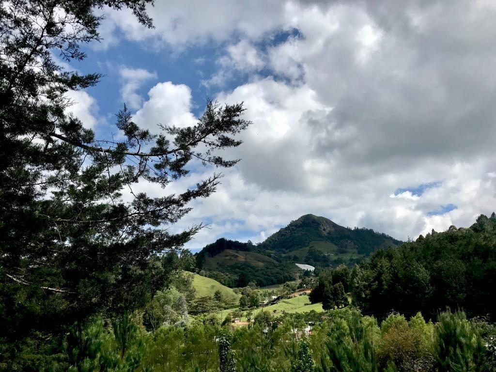 Terreno de 8000 mt2 con 4 Cabañas en Venta en El Retiro