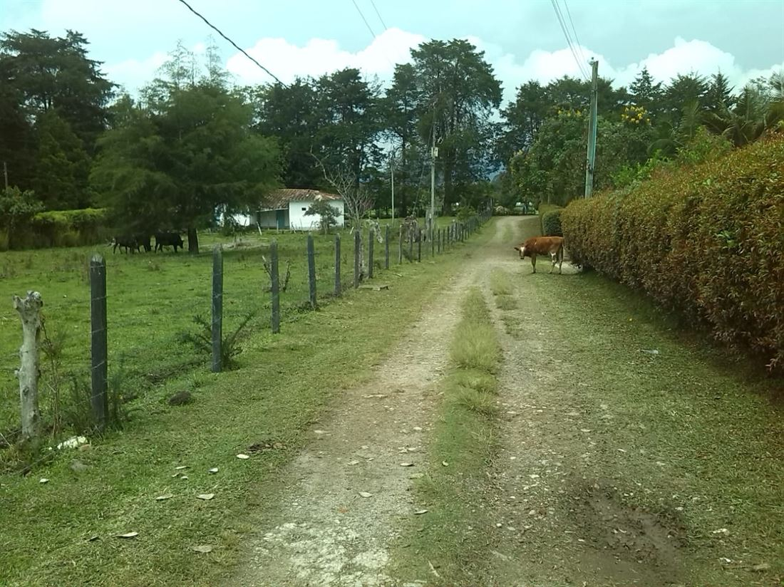 Campestre lote en venta en Llano grande Medellin