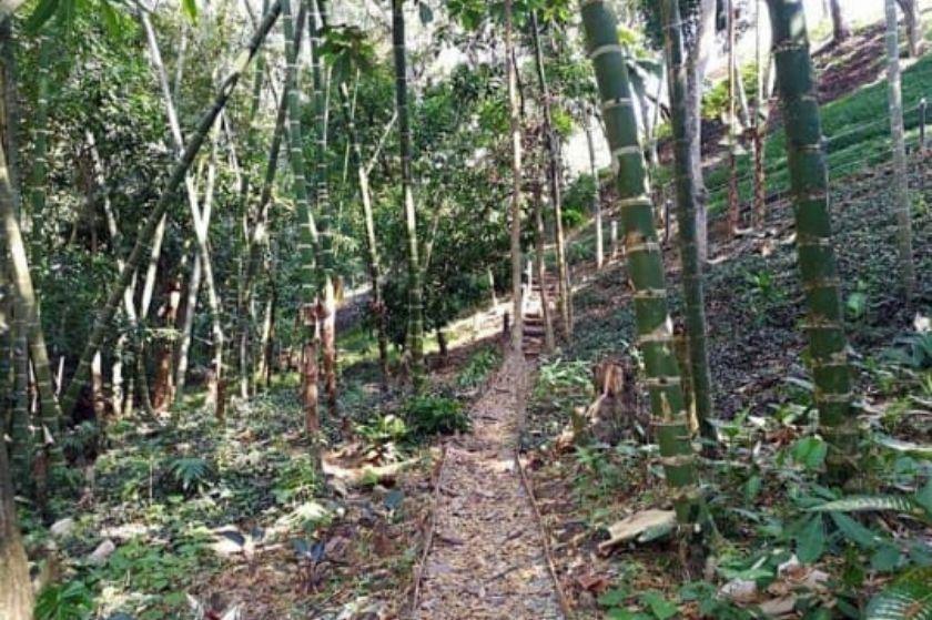 Lote con Planos Arquitectónico en Venta en Parcelacion la Pradera en Sopetran - Antioquia