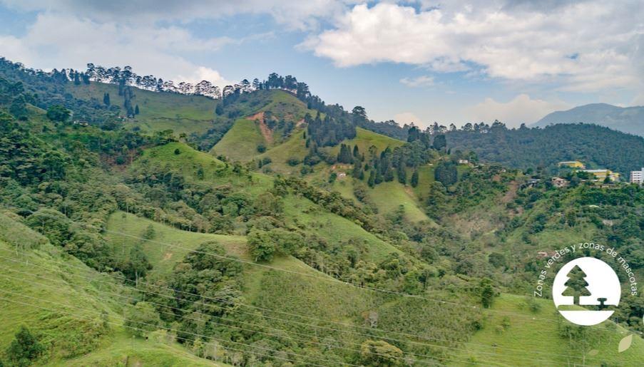 Ardisia Natural Proyecto en Venta Sabaneta